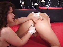 naughty d
