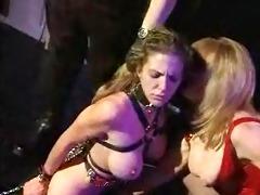 flogged
